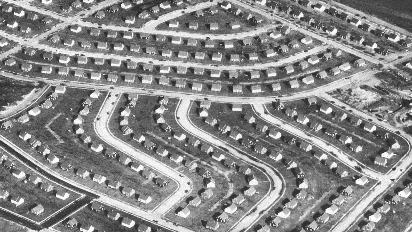 William Levitt, des banlieues en série